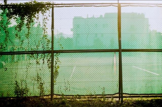 fence by sova5